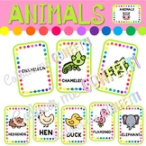 Animals - Flashcards - Colour me Confetti