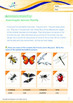 Animals - Flying Animals: Flying In The Sky (III) - Grade 2