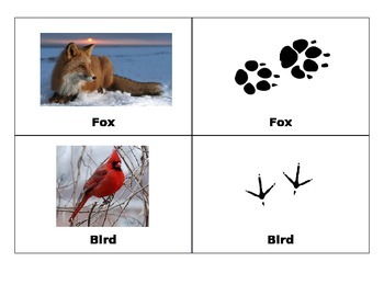 Animals Footprints Cards