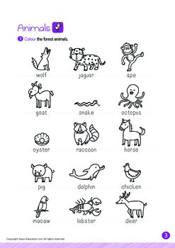 Animals - Forest Animals (II): Digraph CH - K2 (4 years old)
