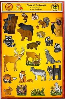 Animals - Forest and Woodland Clip Art by Charlotte's Clips
