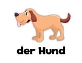 Animals! German Flashcards
