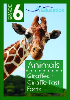 Animals - Giraffes: Giraffe Fast Facts - Grade 6