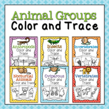 Animal Groups Color and Trace Bundle
