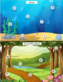 Animals & Habitat Alphabet Matching Game A-Z