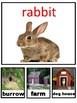 Animals Habitats game
