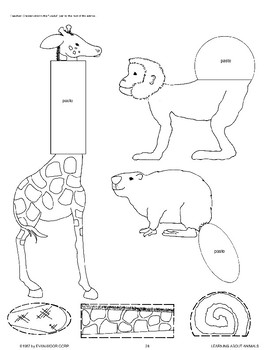 Animals Have Body Parts Suited to Their Way of Life