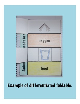 Animals Have Needs Science Interactive Foldable