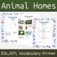 Animals' Homes ESL / EFL Vocabulary Builder - English+Chinese
