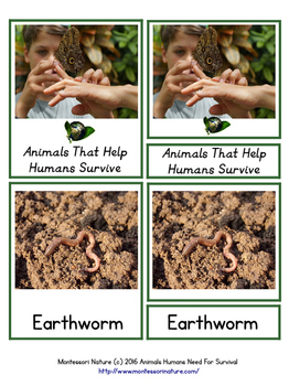 Animals That Help Humans Survive - Earth Day Activity - Montessori Cards