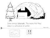 Animals In Winter-A week long mini-unit