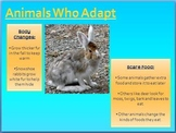 Animals In Winter PPT
