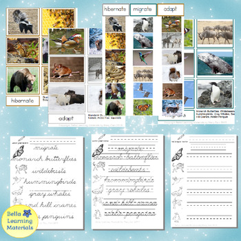 Animals In Winter Sorting Cards  & Writing Cursive