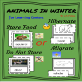 Animals In Winter for Learning Centers