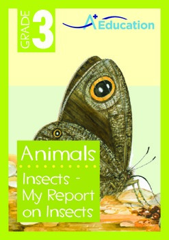 Animals - Insects (II): My Report on Insects - Grade 3