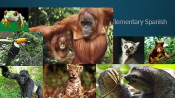 Animals: Jungle Animals PPT