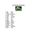Animals: Jungle Animals Vocabulary