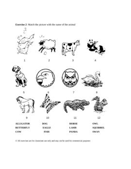 Animals K.2