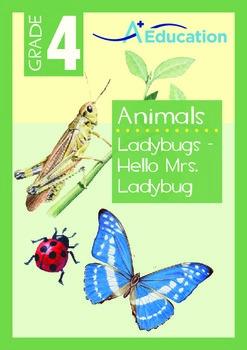 Animals - Ladybugs: Hello Mrs. Ladybug - Grade 4