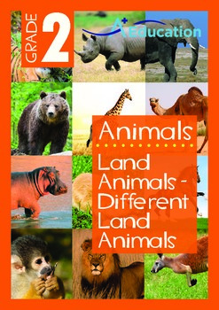Animals - Land Animals (I): Different Land Animals (I) - Grade 2