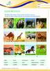 Animals - Land Animals (I): Different Land Animals (I) - Grade 2
