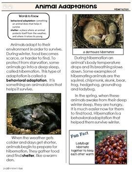 Animals Leveled Reading Passages