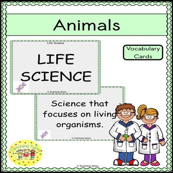Animals Vocabulary Cards