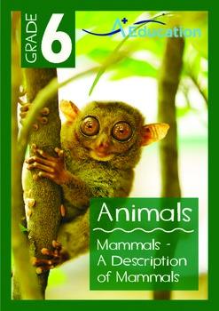Animals - Mammals: A Description of Mammals - Grade 6