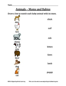 Animals - Moms and Babies - Matching Worksheet
