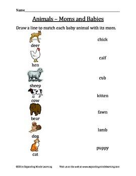 Animals - Moms and Babies - Matching Worksheet