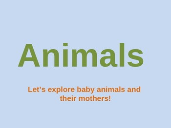Animals: Mothers and their Babies