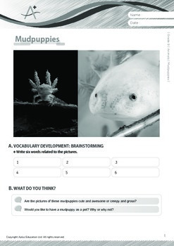 Animals - Mudpuppies - Grade 9