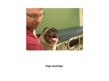 Animals Need Help Book