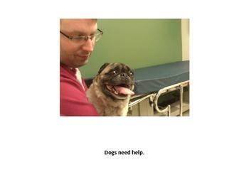 Animals Need Help Book