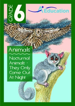 Animals - Nocturnal Animals: They Only Come Out At Night - Grade 6