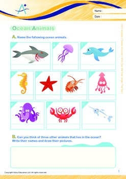 Animals - Ocean Animals (V): Who Can We See Under The Sea - Grade 2