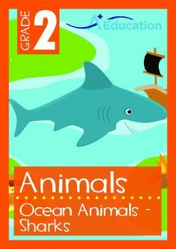 Animals - Ocean Animals (VI): Sharks - Grade 2