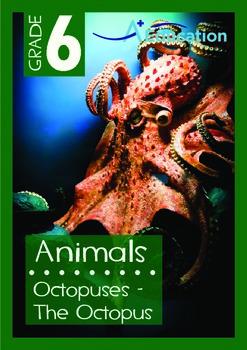 Animals - Octopuses: The Octopus - Grade 6