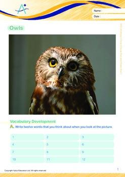 Animals - Owls: Olivia Owl and Owen Owl - Grade 2
