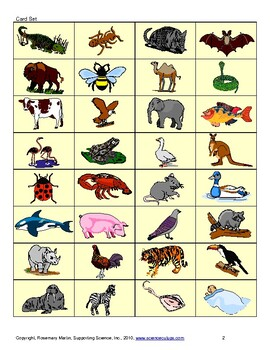 Animals' Parts