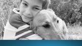 Animals: Pets Show and Tell PPT