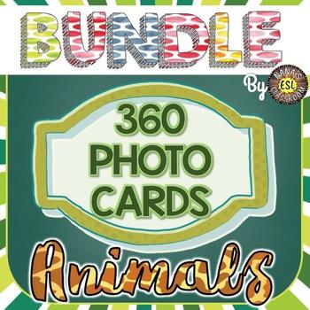 Animals Picture Cards BUNDLE