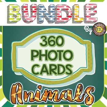 Animals 360 Photo Flash Cards MEGA BUNDLE - SAVE BIG!