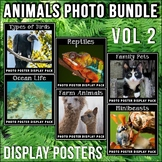 Animal Posters BUNDLE #2 | Science Vocabulary | Reptiles | Birds | Farm Animals