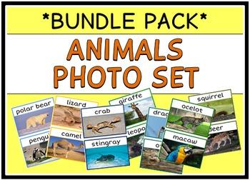 Animals Photo Set (BUNDLE PACK)