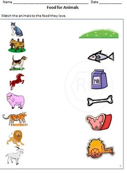 animals plants body and food worksheets for grade 1 by rituparna reddi. Black Bedroom Furniture Sets. Home Design Ideas