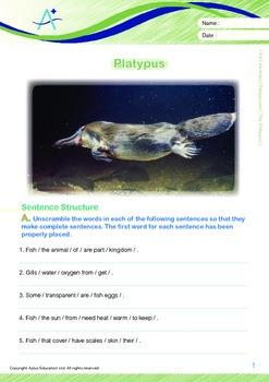 Animals - Platypuses: The Platypus - Grade 4