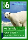 Animals - Polar Bears: Polar Bears in the Arctic - Grade 6