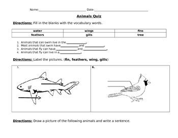 Animals Quiz-fly & swim