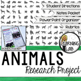 Animals Guided Research Project